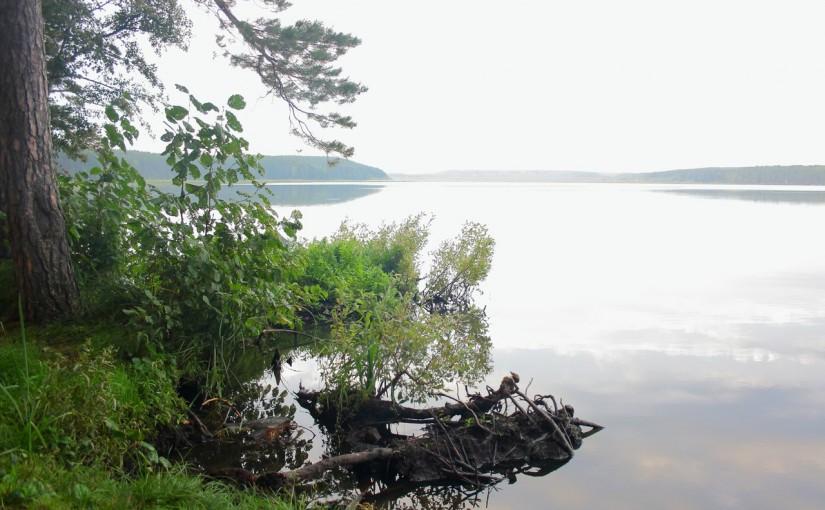 Озеро Гурино. Выходные в природном парке.